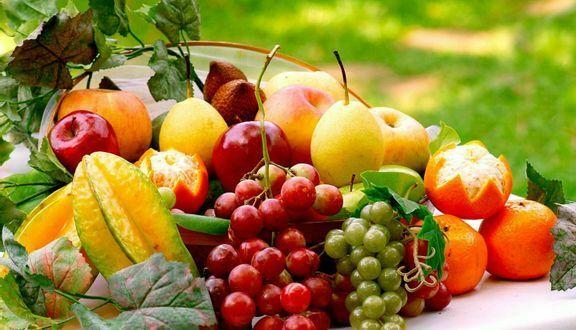 Quy trình đăng ký kiểm dịch thực vật xuất khẩu